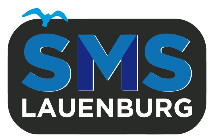 Social Media Sprechstunde Lauenburg