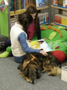 Lesen frei Schnauze Bücherei Lauenburg