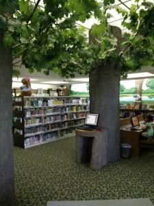 Willard Library - Blog Lauenburg